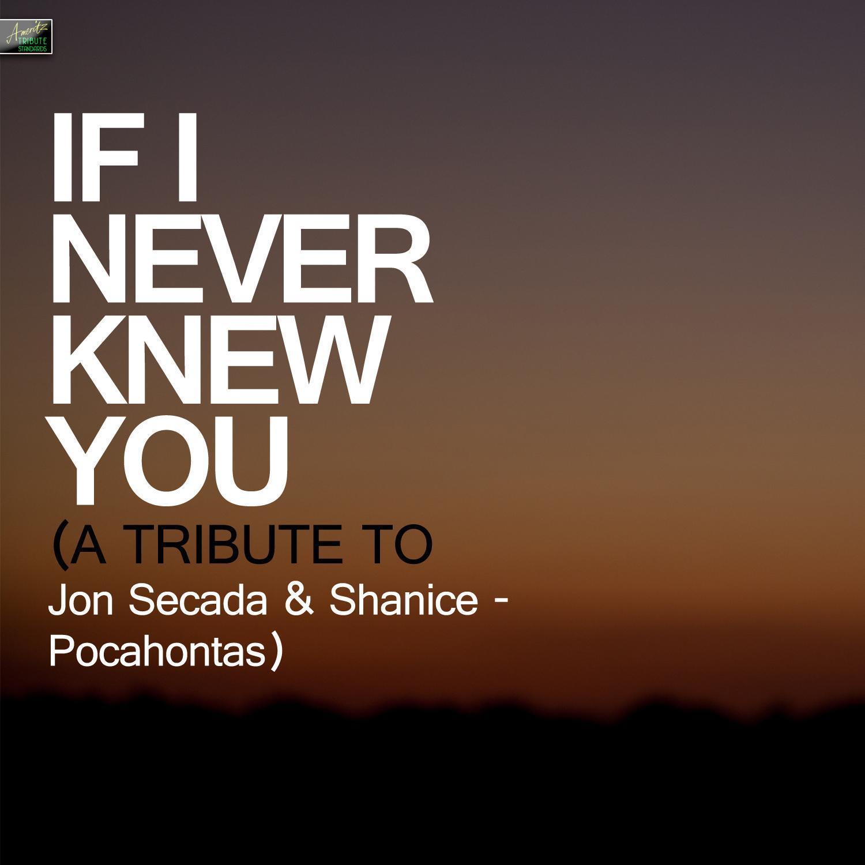 if+i+never