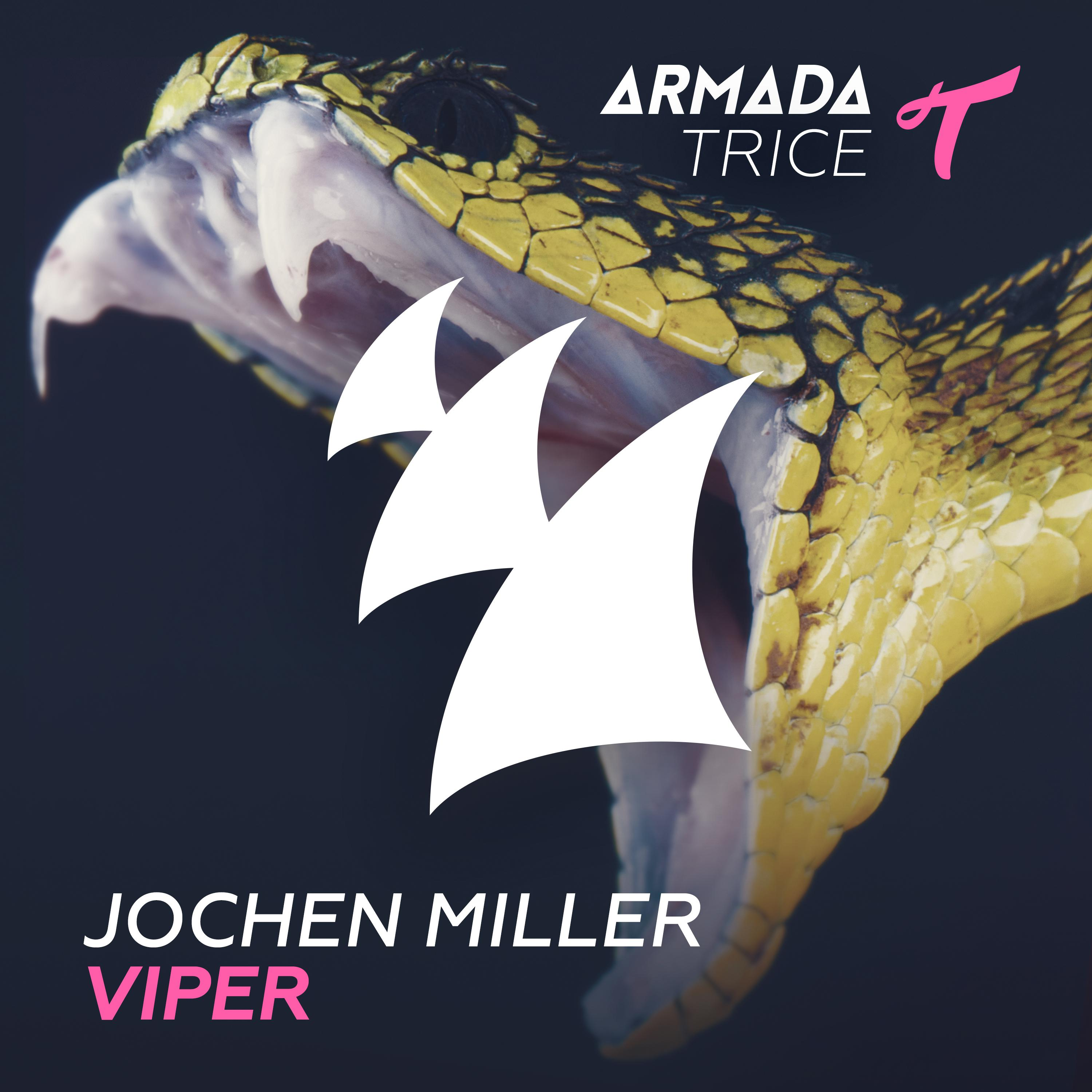 viper (extended mix)