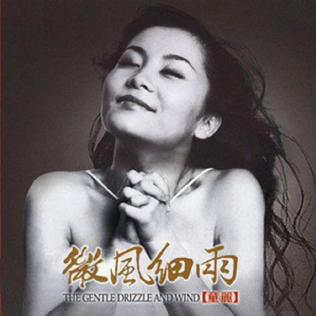 钗头凤 - 童丽 - 单曲 - 网易云音乐