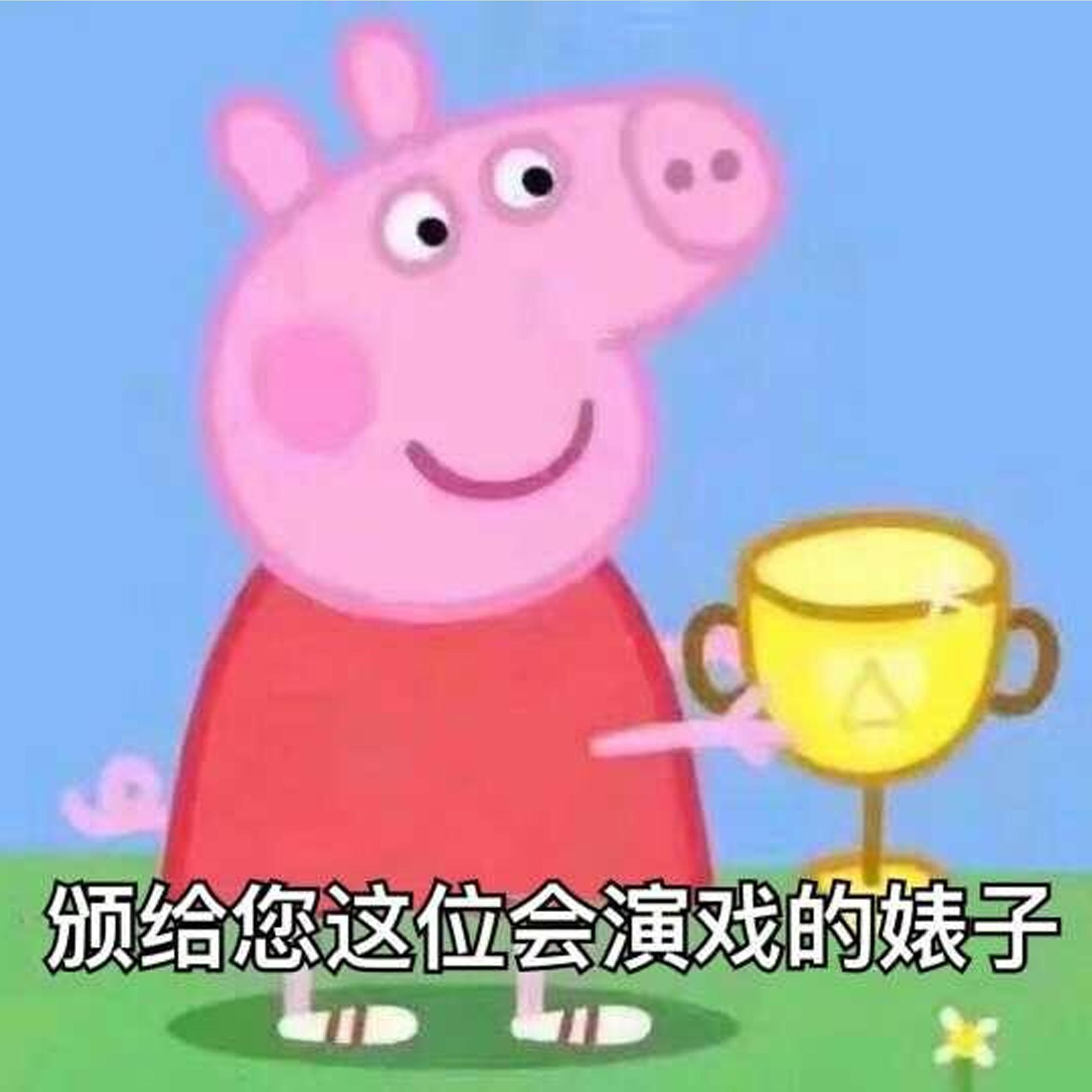 猪洗澡的视频表情包
