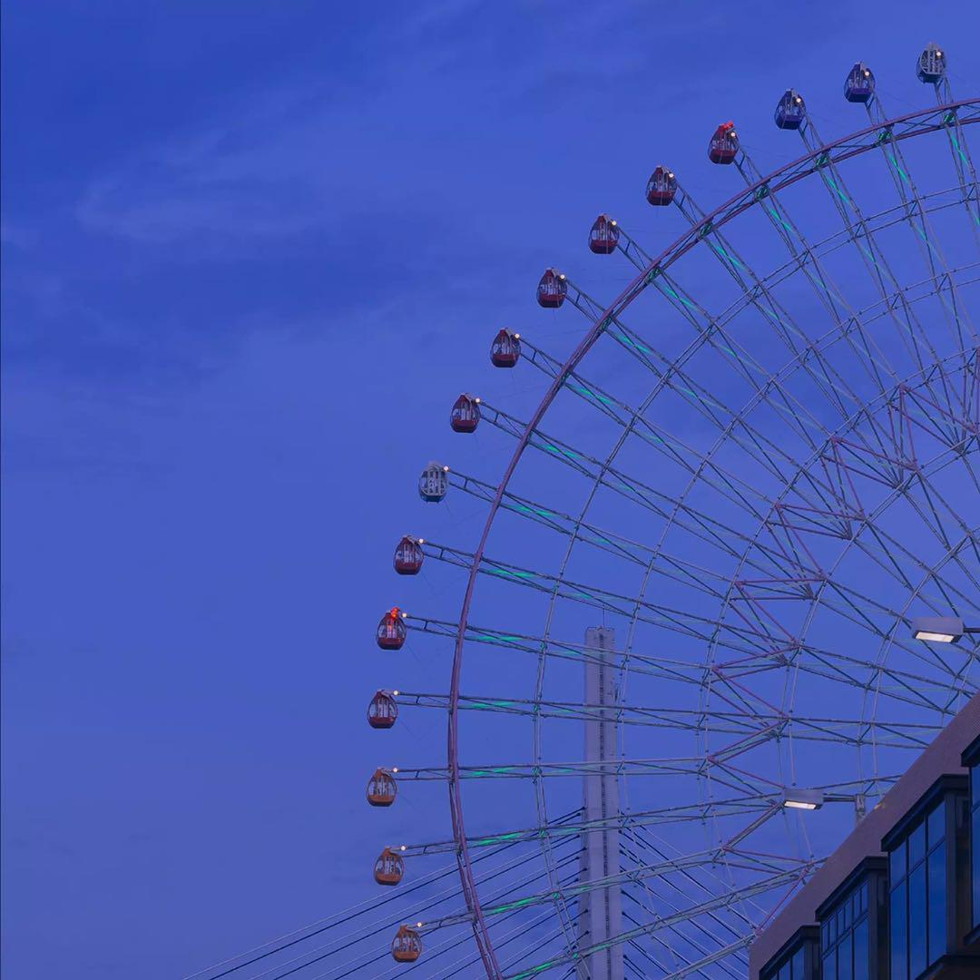 we+made+25+turns+in+the+ferris+wheel+that+day+