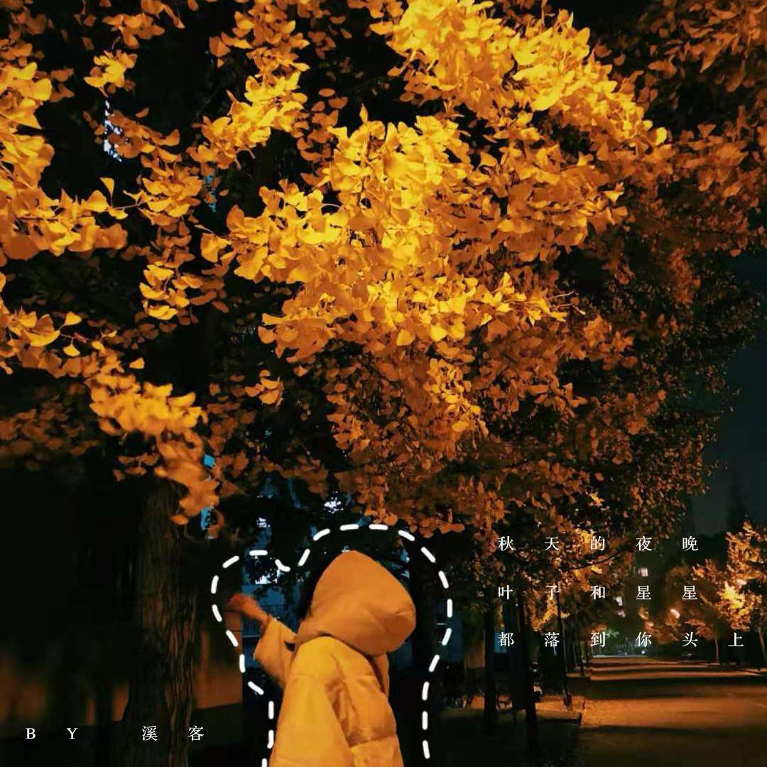 秋天的夜晚叶子和星星都落到你头上