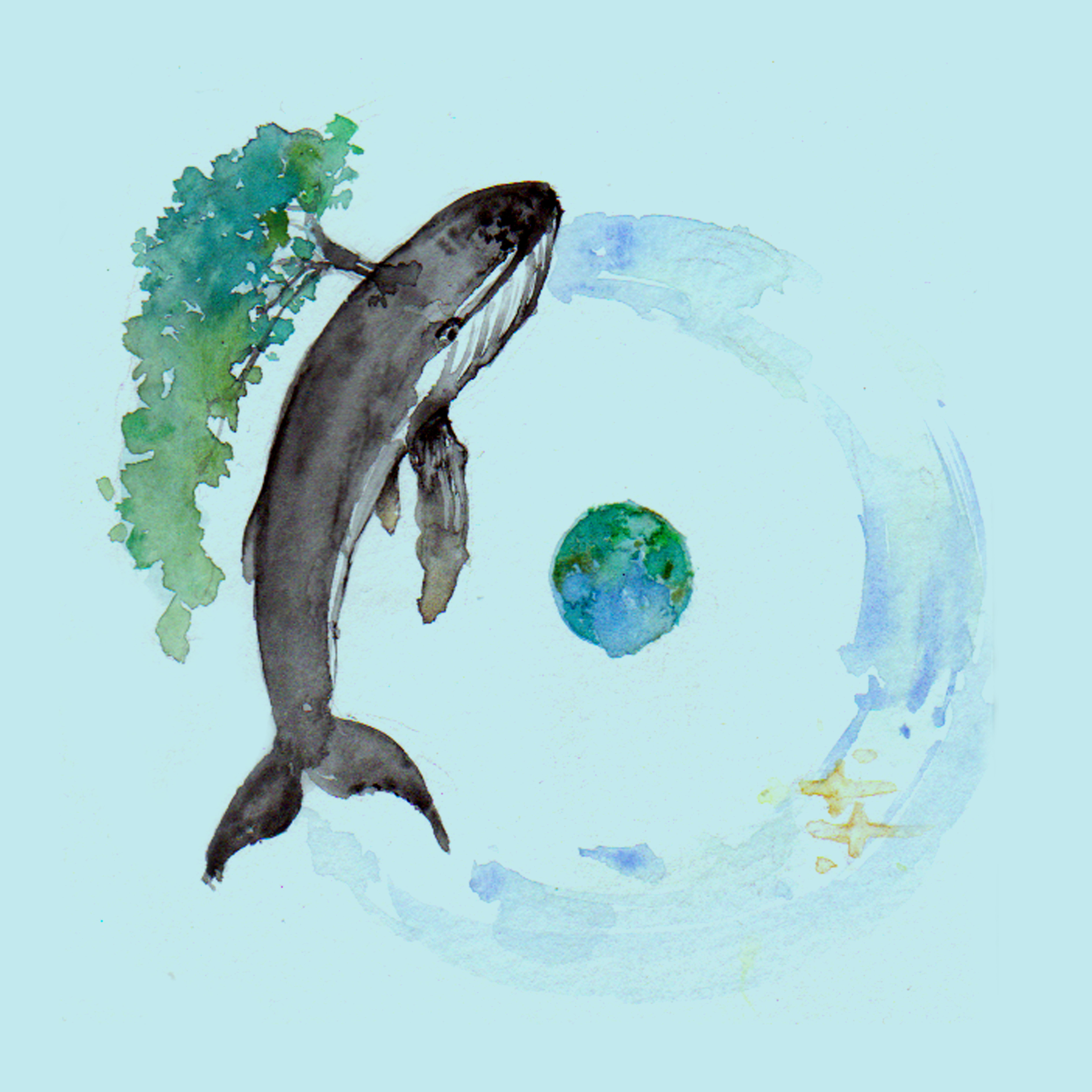 鲸 图片素材