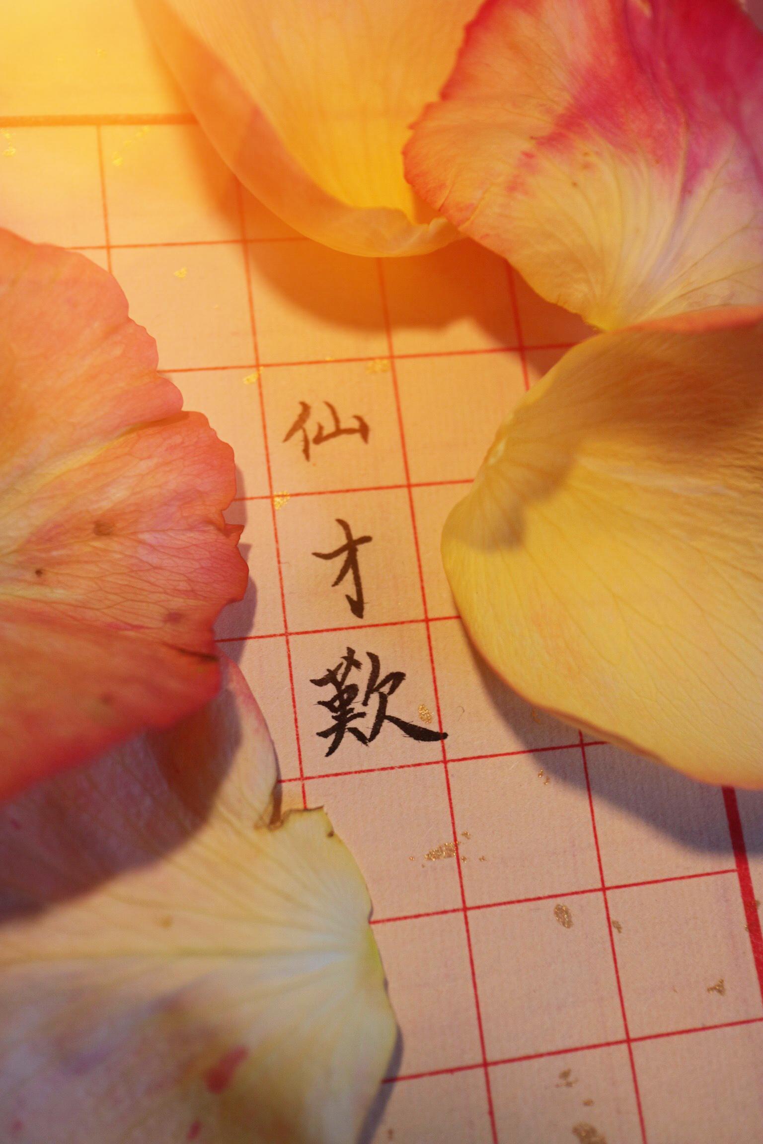 李袁杰-离人愁d调古筝伴奏(谢佳国乐 remix)